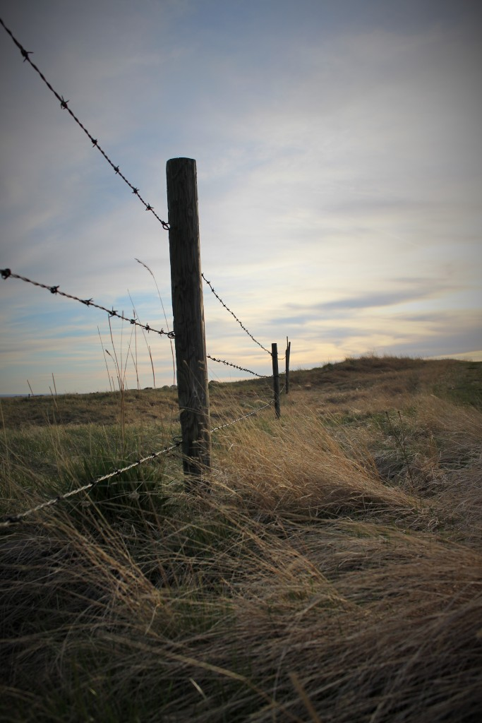 If you have fences in you're life - it's not a bad thing