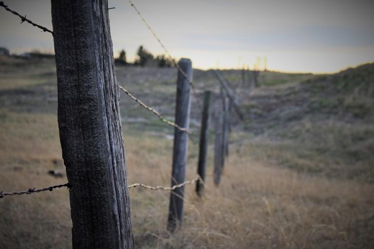 Prarie fences